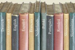 Как открыть курсы иностранных языков