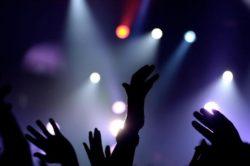 Бизнес-план ночного клуба - как открыть