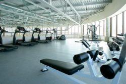 Бизнес-план тренажерного зала и как открыть