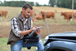 Бизнес-план фермерского хозяйства