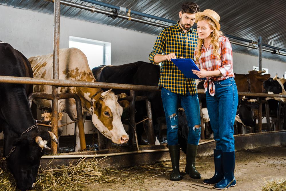 Бизнес-план небольшой фермы с сотрудниками