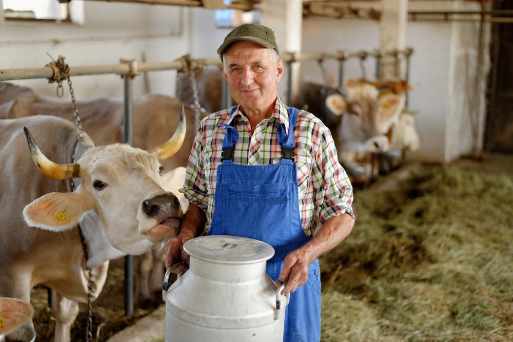 Концепция бизнес-плана фермера