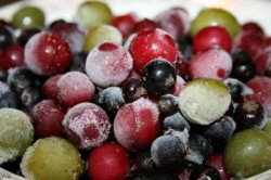Изображение - Производители замороженных овощей proizvodstvo-zamorozhennyh-ovoschey-i-fruktov-250x166