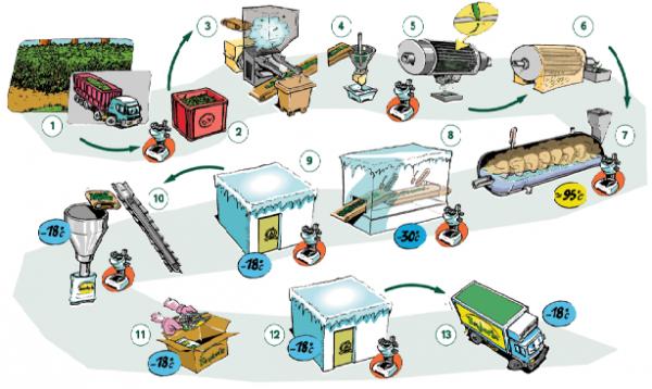 Изображение - Производители замороженных овощей tehnologiya-proizvodstva-zamorozhennyh-ovoschej-fruktov-600x358